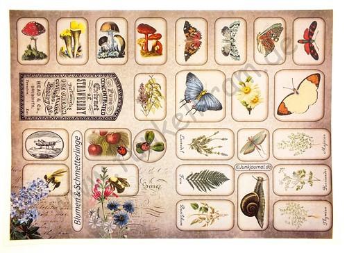 Cutout Sticker Bogen Blumen & Schmetterlinge DIN A4 1Stk
