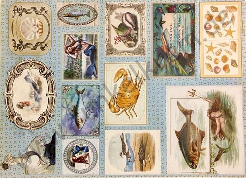 Cutout Sticker Bogen Mermaid DIN A4