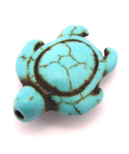Bild: schildkröte türkisoptik